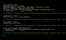 How to remove a Git tag (locally and remotely)